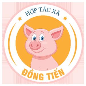 HTX Đồng Tiến